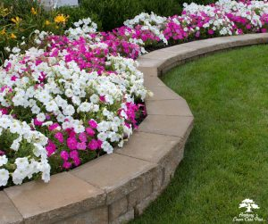 Masonry Services with L.I. Elite Lawncare
