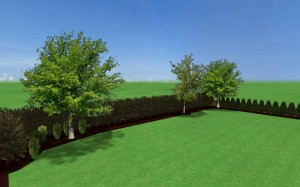 3d design of yard reconstruction.