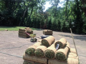 Sod before laying down