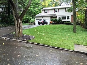Lawn landscaping done by Anthony's Lawn Care plus
