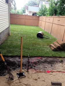 Lawn maintenance after redesign