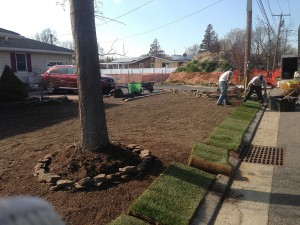 Sod being installed by Anthony's Lawn Care Plus