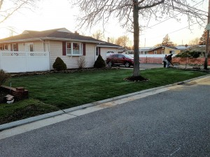 Residential lawn care by Anthony's Lawn Care Plus