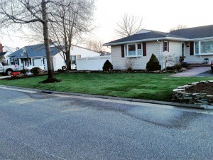 Fresh lawn care by Anthony's Lawn Care Plus