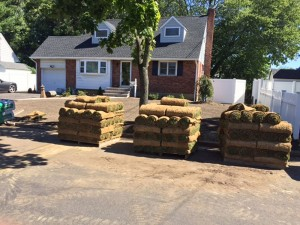 Pallets of Sod prior to being installed.