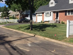 Fresh sod laid residential property