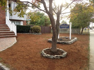 Commercial landscaping by Anthony's Lawn Care Plus