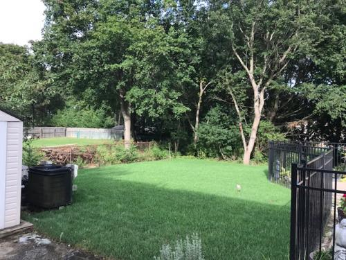 sod-after
